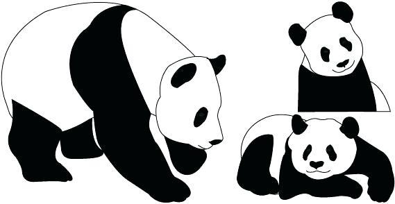 569x294 giant panda drawing line drawing of a giant panda bear walking