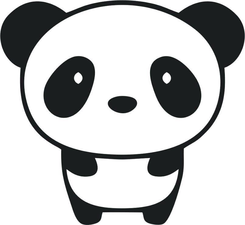 Panda Drawing Easy