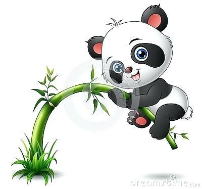 Panda Drawing Images