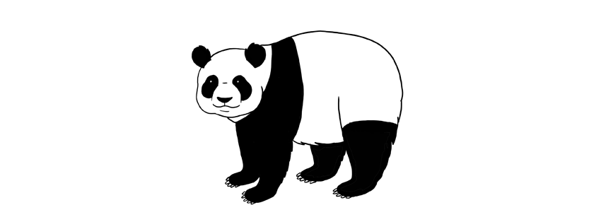 850x314 How To Draw A Panda Step