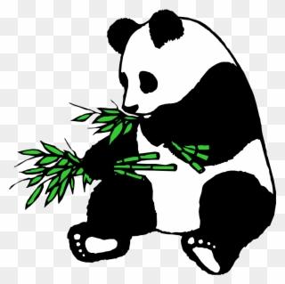 320x319 Panda