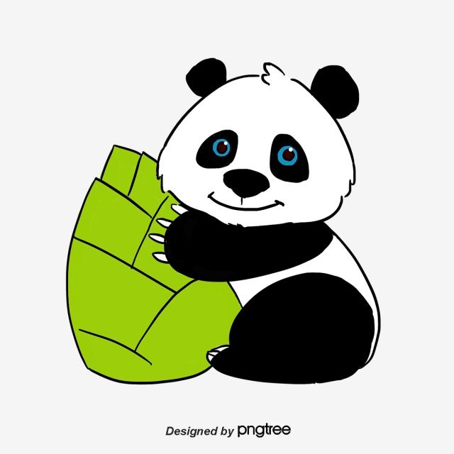 640x640 panda eating bamboo, panda, bamboo, animal png clipart image