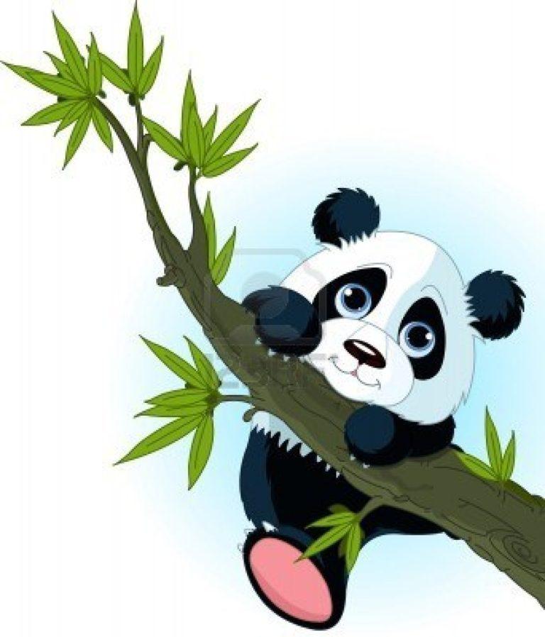 768x898 Baby Pandas Eating Bamboo Drawing
