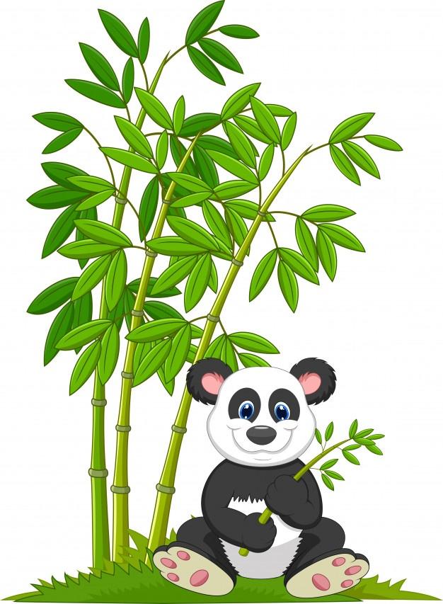 626x853 Cartoon Panda Eating Bamboo Vector Premium Download