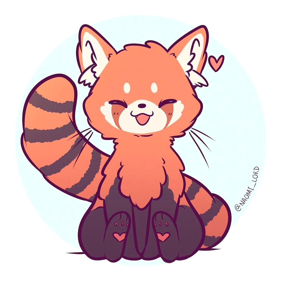 1080x1080 how to draw a cartoon red panda thekindproject simple cute drawing