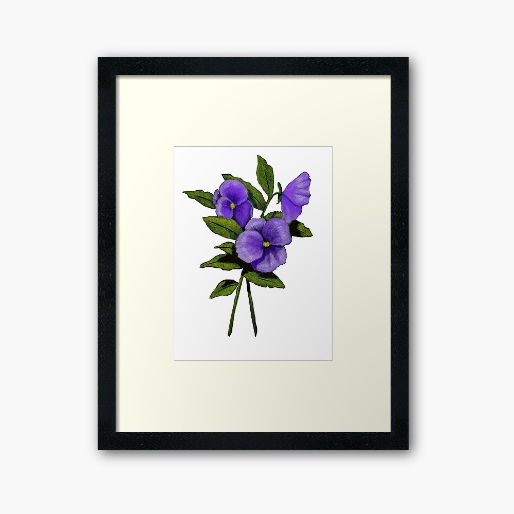 Pansy Flower Drawing Free Download Best Pansy Flower Drawing On