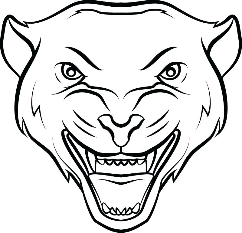 800x770 Drawings Of Panthers Panthers Mascot Search Clip Art Illustration