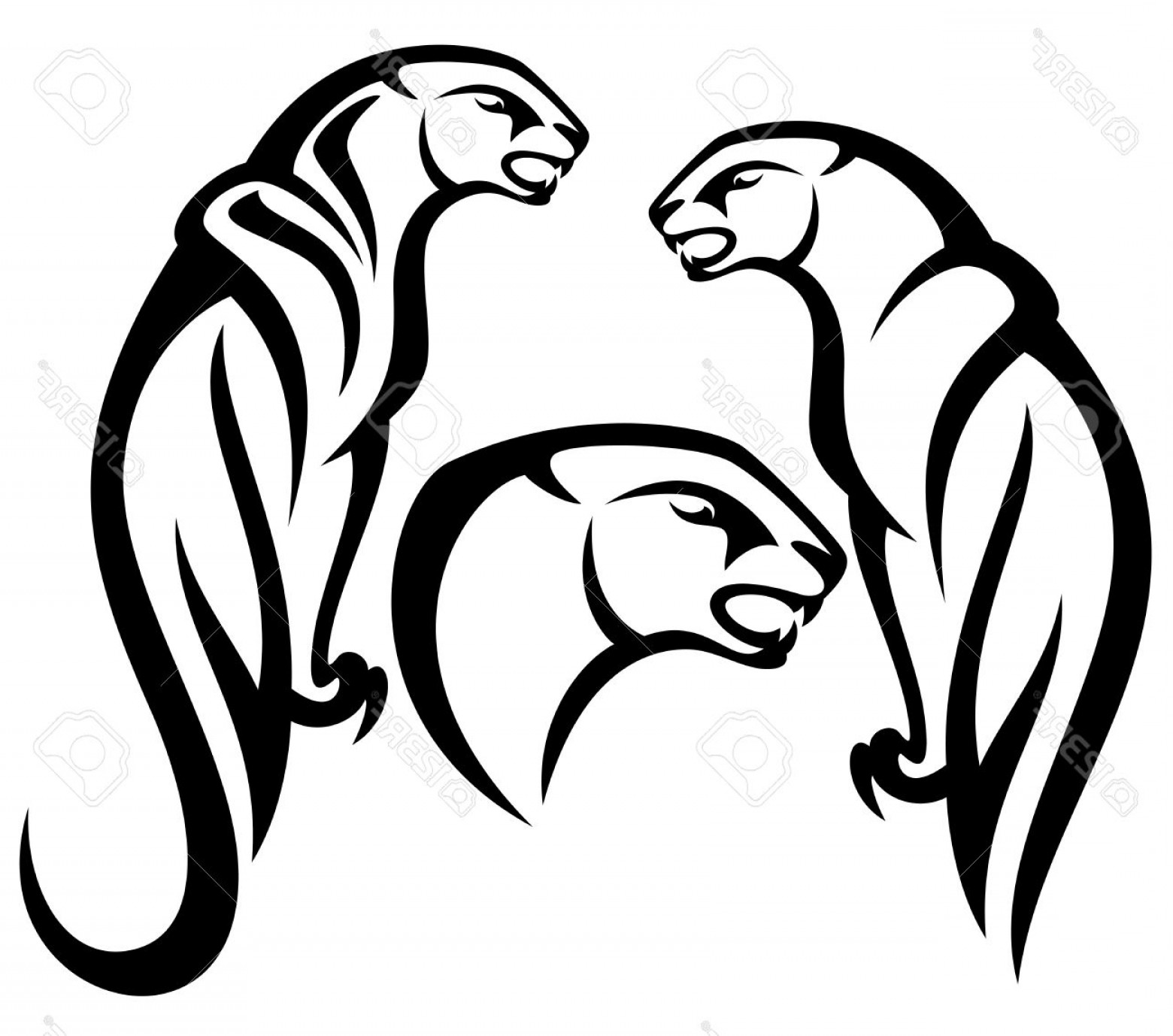 1560x1378 Photopanther Tribal Vector Design Black And White Outline