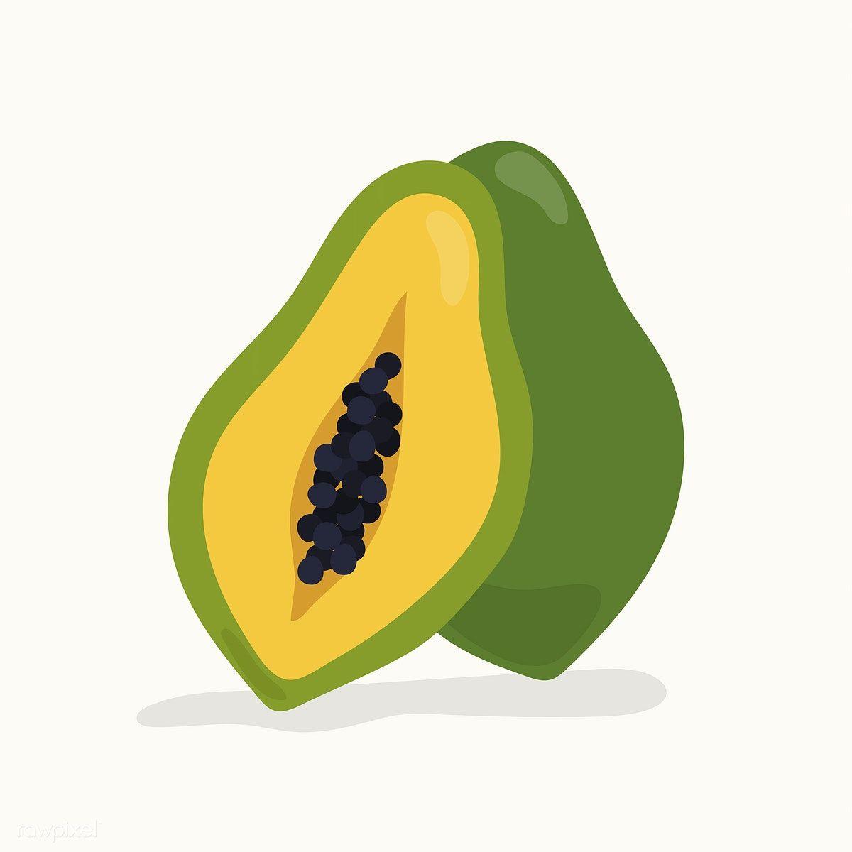 1200x1200 Hand Drawn Papaya Fruit Illustration Free Image