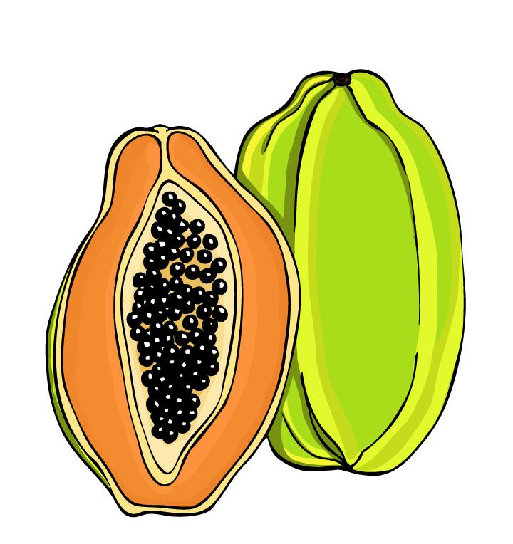 720x764 Papaya Clipart Drawing