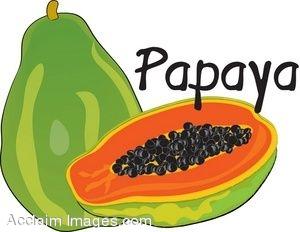 300x232 Papaya Fruit Tree Clipart