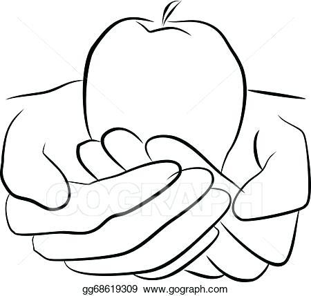 450x429 Fruit Drawings Running