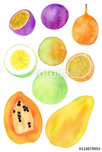 336x500 Exotic Fruits Illustration Hand Drawn Set Of Fruit