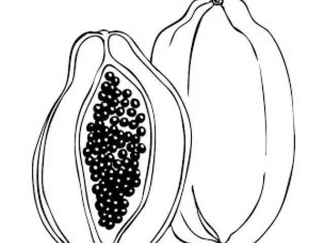 640x480 Free Papaya Clipart, Download Free Clip Art