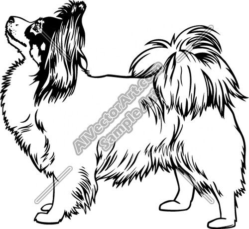 500x461 papillon dog papillon papillon dog, dog artwork, dog art