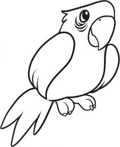 248x302 How To Draw How To Draw A Parrot For Kids