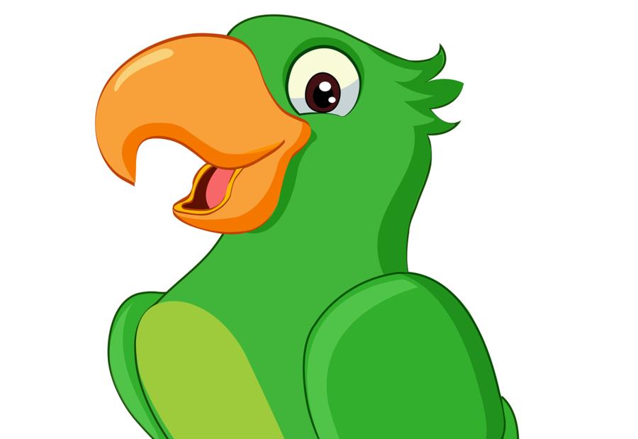 900x619 Parrot, Drawing, Illustration, Transparent Png Image Clipart