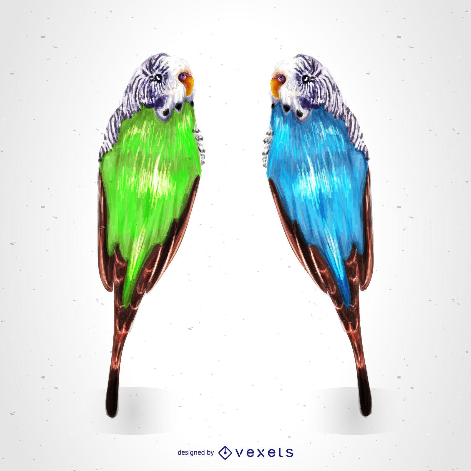1600x1600 Tropical Parrots Drawing