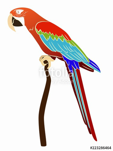 375x500 Illustration Of A Parrot Vector Drawing Stock Image And Royalty