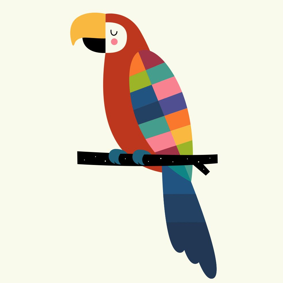 983x983 Rainbow Parrot Canvas Print In Kids Drawing Parrot