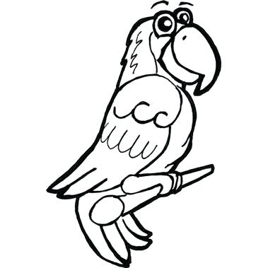 379x379 easy parrot drawing grey parrot simple free pages parrot easy
