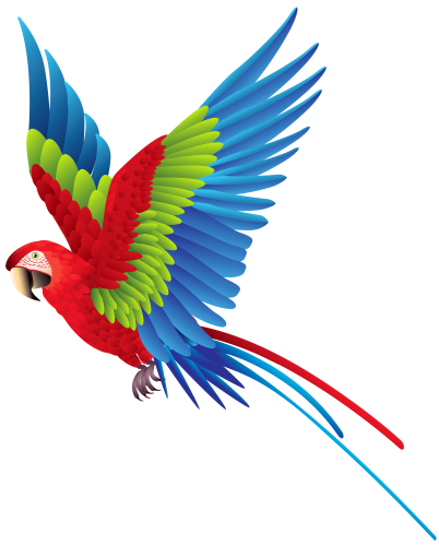 402x500 Collection Of Free Parrot Drawing Colorful Download On Ui Ex