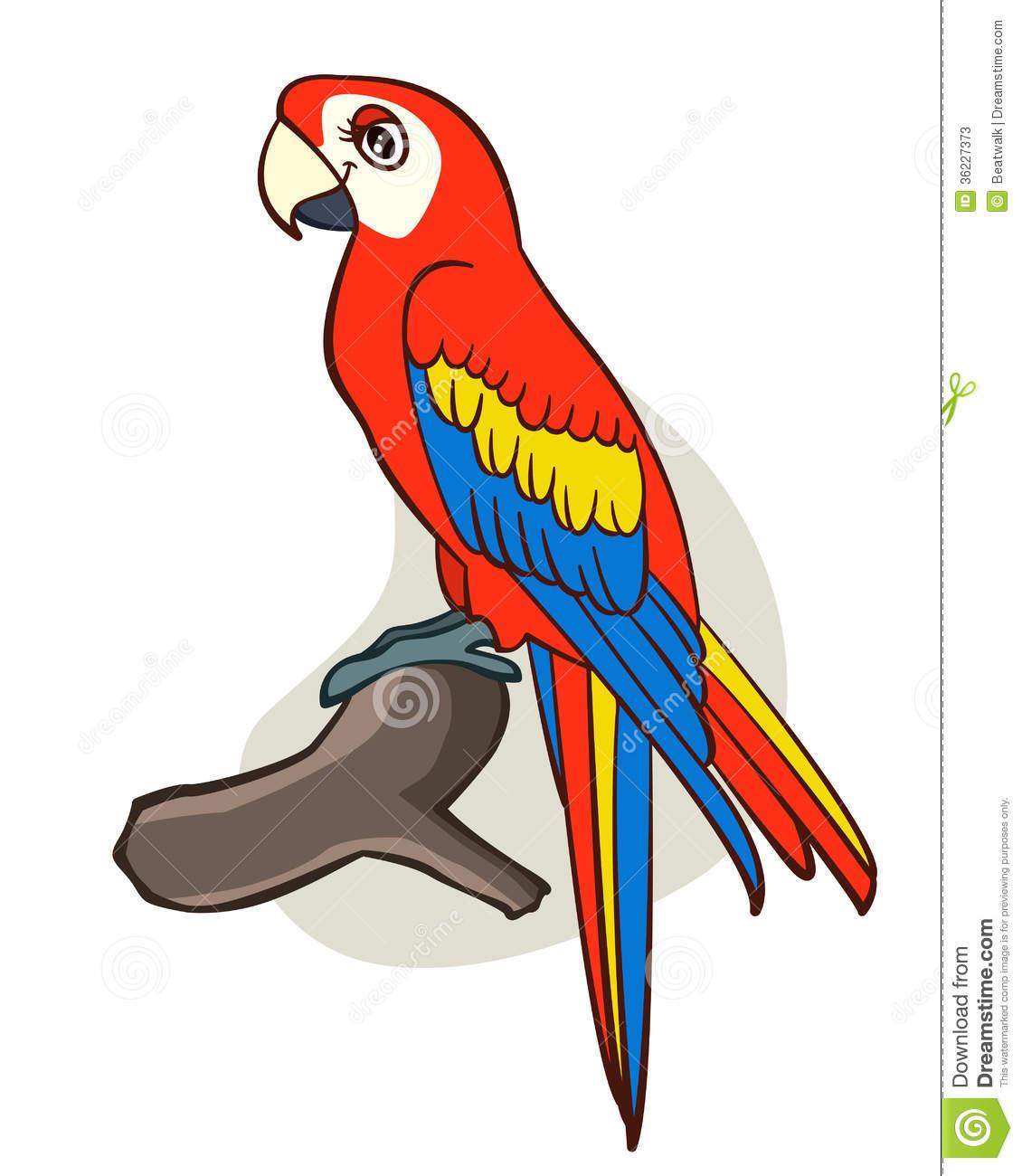 1130x1300 Cute Parrot Drawing Cute Parrot Drawing