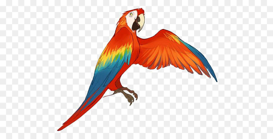 900x460 How To Draw A Macaw Collection Of Red Parrot Drawing Calendar