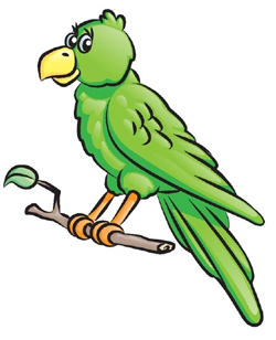 250x308 How To Draw Parrots Drawing Tutorials Drawing How To Draw