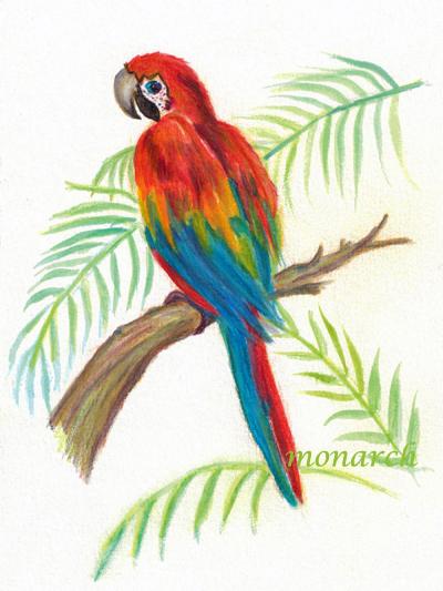400x533 Parrot X Post Watermedia