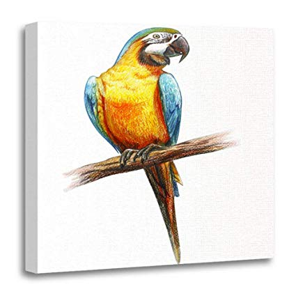 425x425 Emvency Canvas Prints Square Inches Colorful