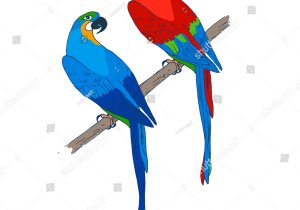 300x210 Beautiful Romantic Parrot Of Sketch Love Birds