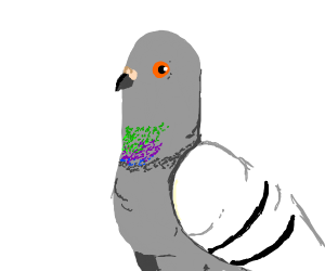 300x250 Particle Pigeon