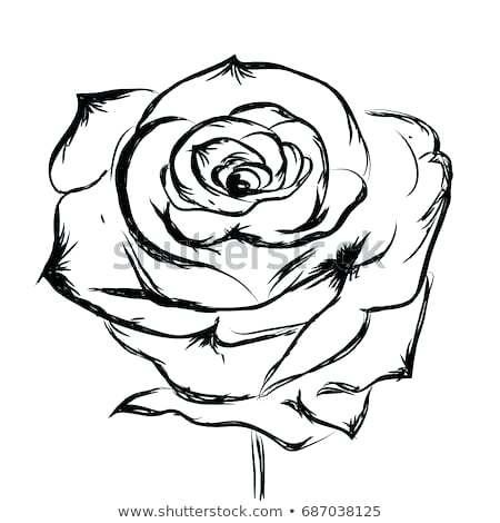 450x470 Flower Design Drawing