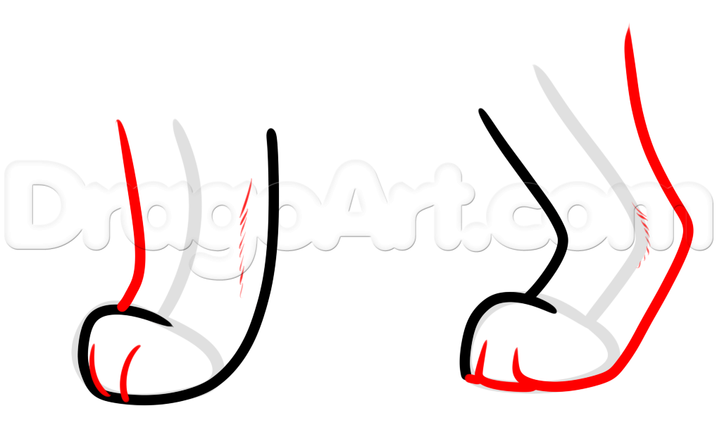 1018x624 How To Draw Cat Paws, Step