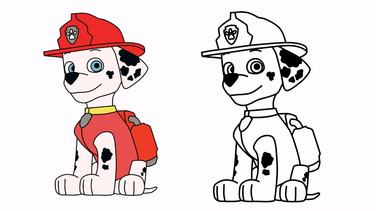 Paw Patrol Marshall Drawing | Free download on ClipArtMag