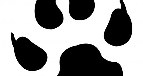 471x250 Dog Paw Print Drawing A Line Robo Patrol Vector Easy Ajedrezdeen