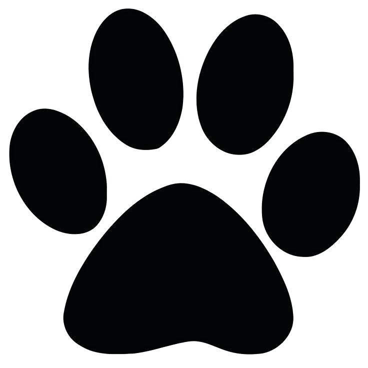 736x736 How To Draw A Panther Paw Draw A Paw Print Step Draw A Panther