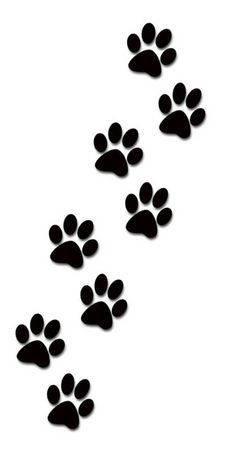 236x452 Dog Paw Prints