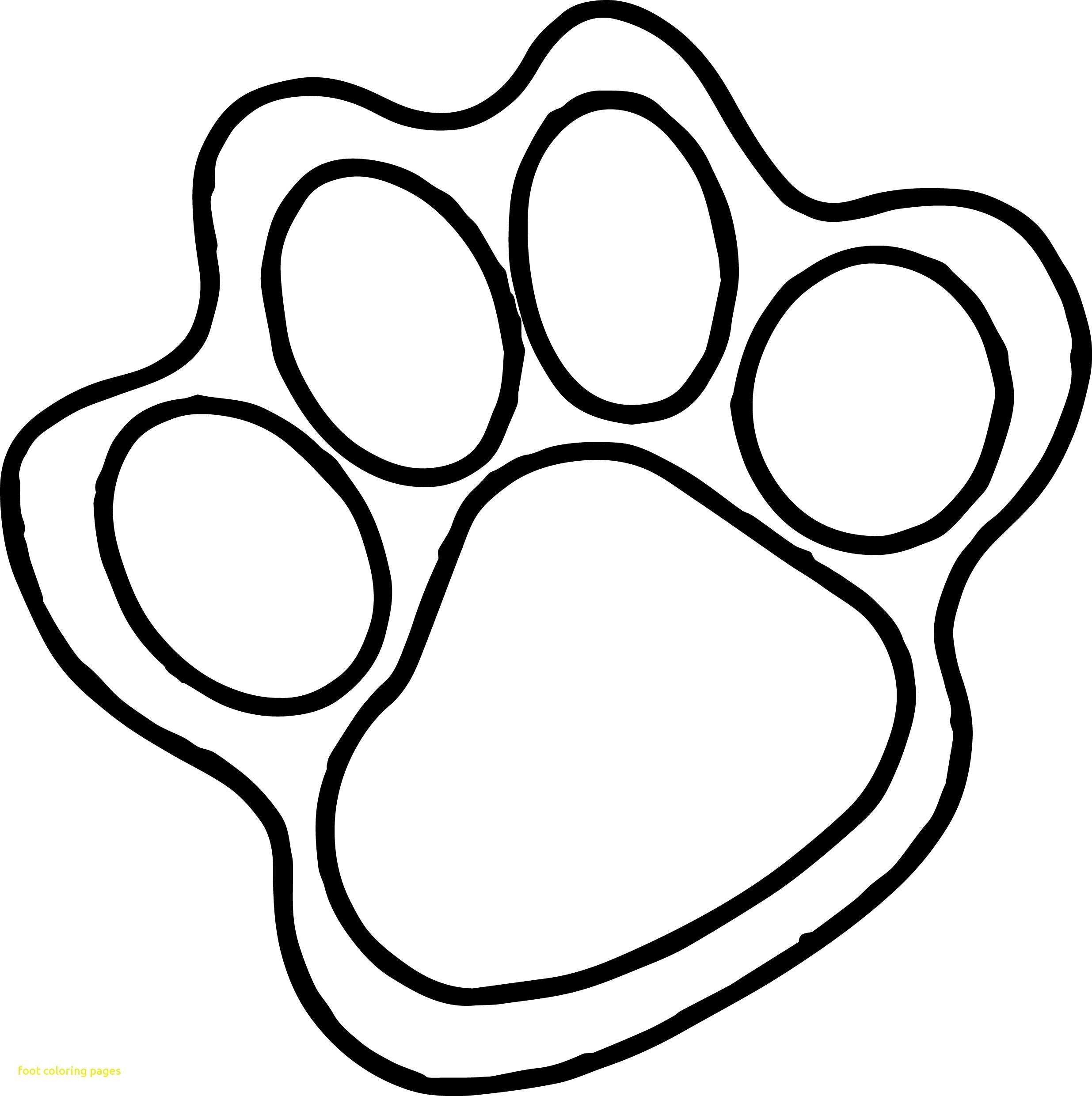 Paw Print Drawing Free Download Best Paw Print Drawing On