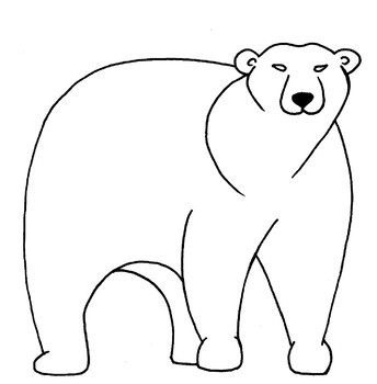 344x350 Bear Drawing Pdf