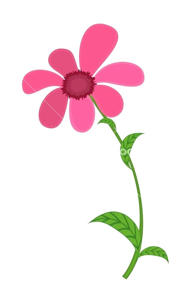 632x1000 pink flower drawing easy pink flower drawing