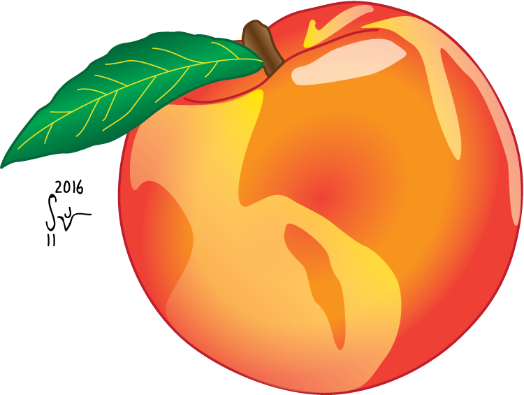 750x565 Collection Of Free Pear Drawing Peach Download On Ui Ex