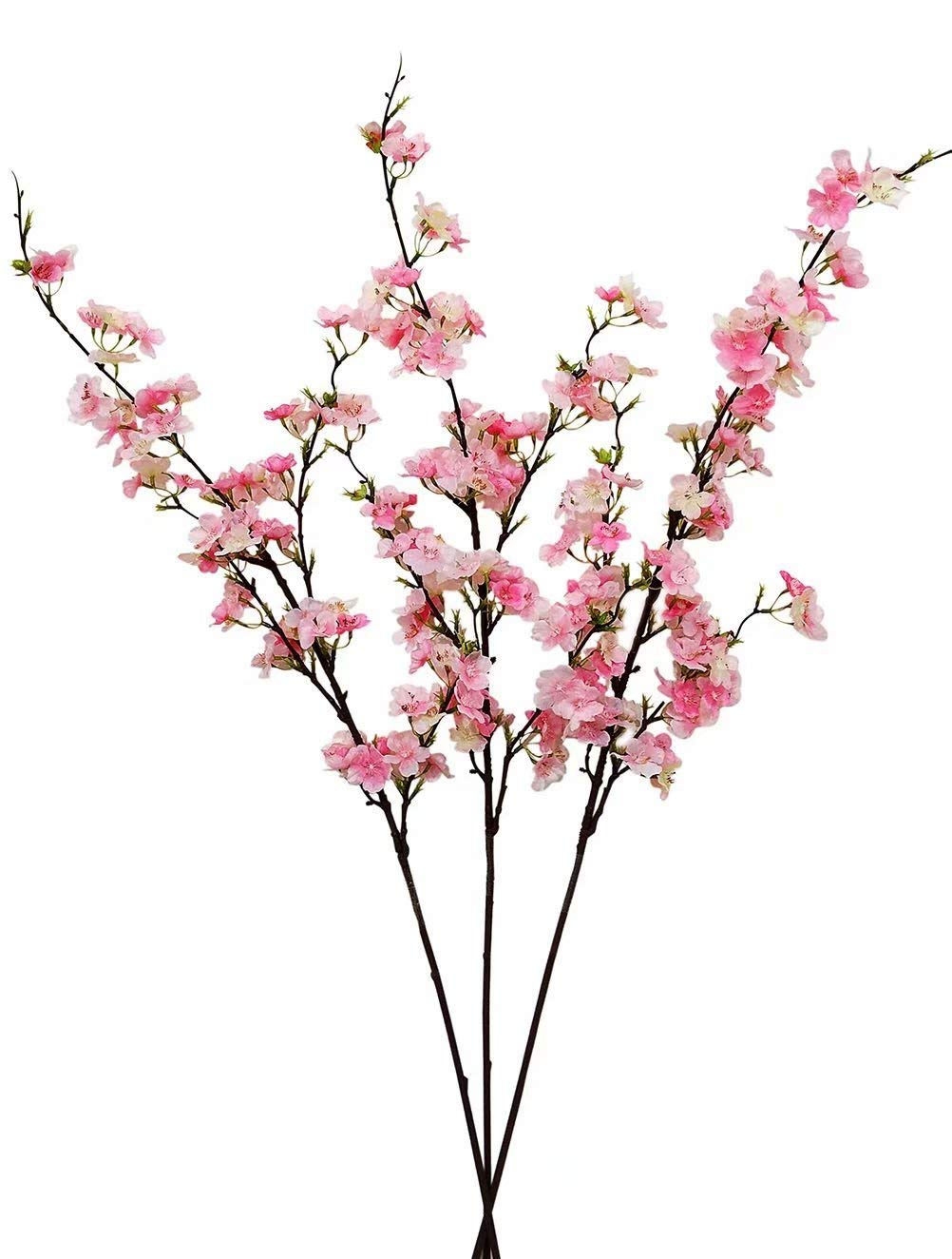 1002x1324 cheap pink peach tree, find pink peach tree deals on line
