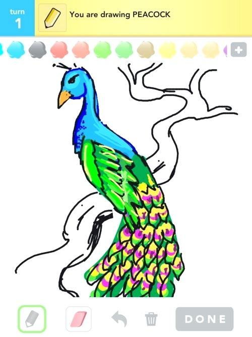 500x667 how to draw peacock simple peacock drawing draw peacock easy