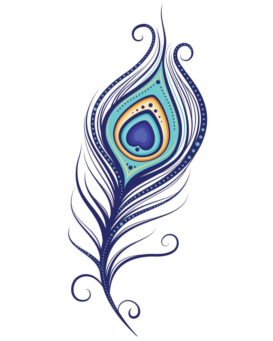 Collection of Peacock feather clipart   Free download best