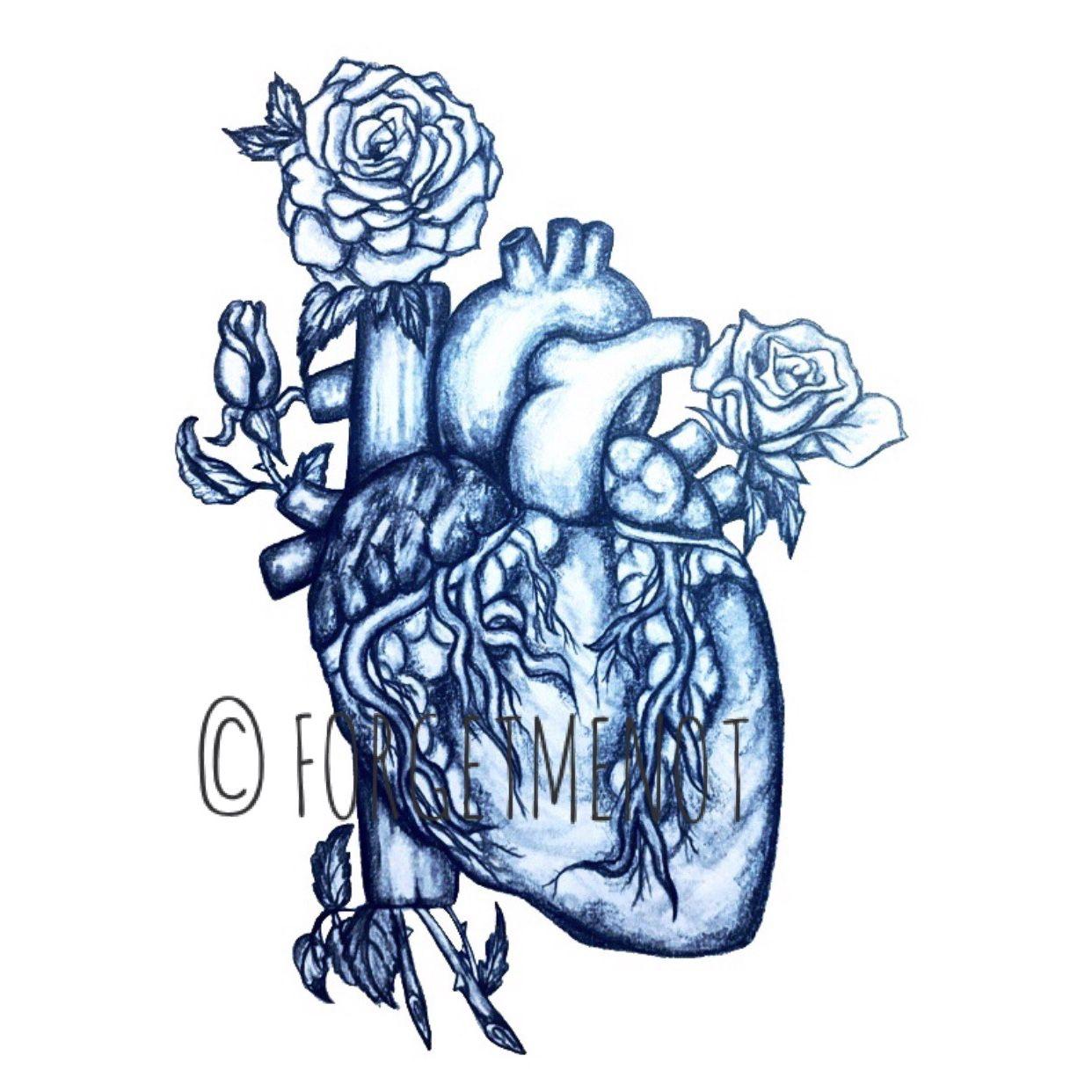 1242x1242 drawing art, anatomical art, anatomy art, flower art, anatomical