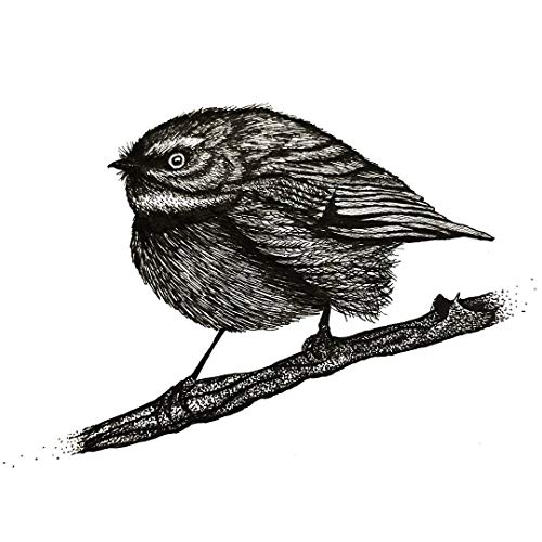 500x500 Pen And Ink Little Bird Handmade