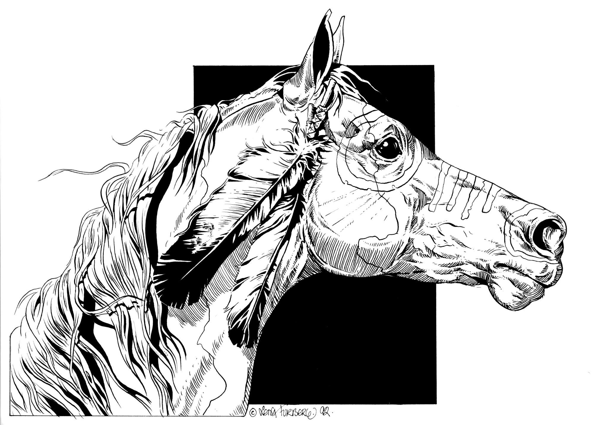 2048x1432 Black And White Pen Ink Horse Drawing Horses In Ink