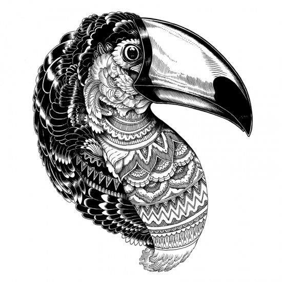 550x550 Black And White Tucan Illustration Zentanglespatterns Art